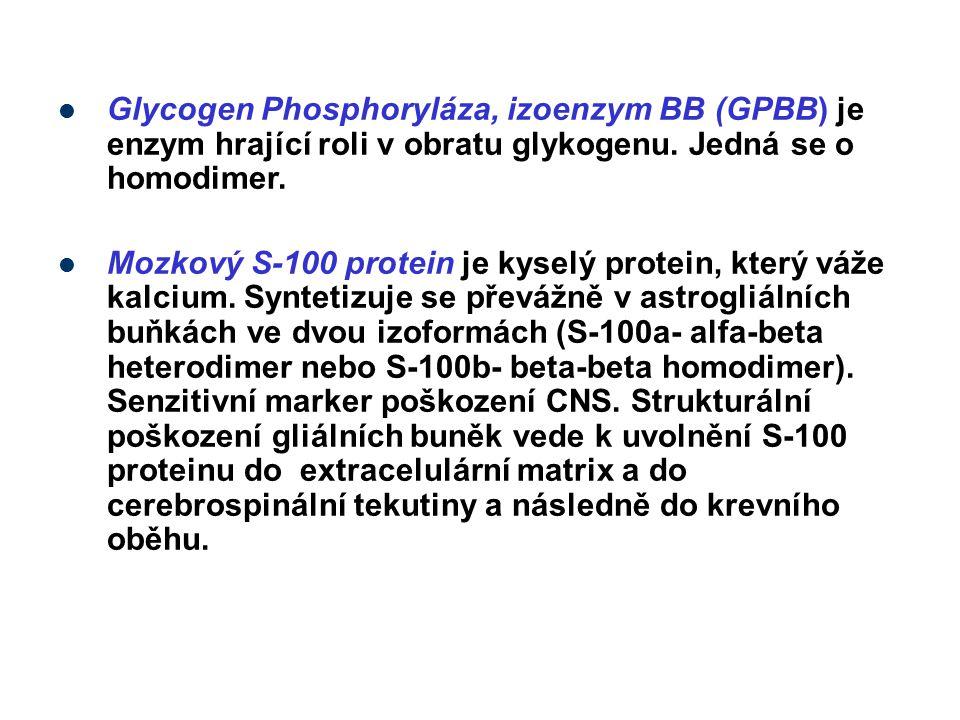 Glycogen Phosphoryláza, izoenzym BB (GPBB) je enzym hrající roli v obratu glykogenu. Jedná se o homodimer.