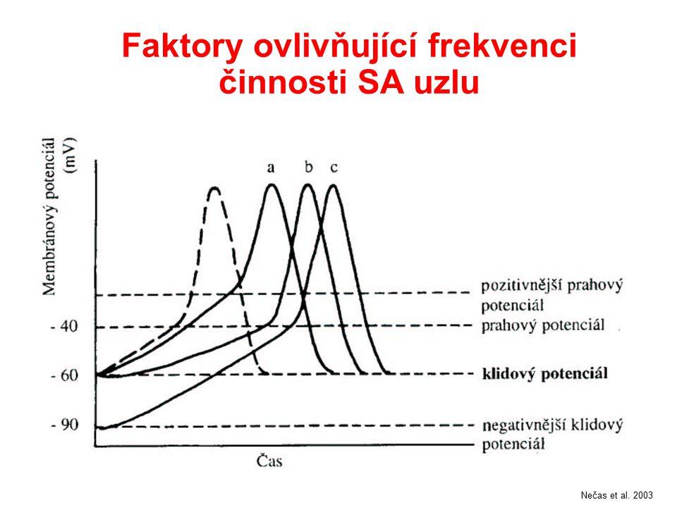 Faktory ovlivňující frekvenci činnosti SA uzlu