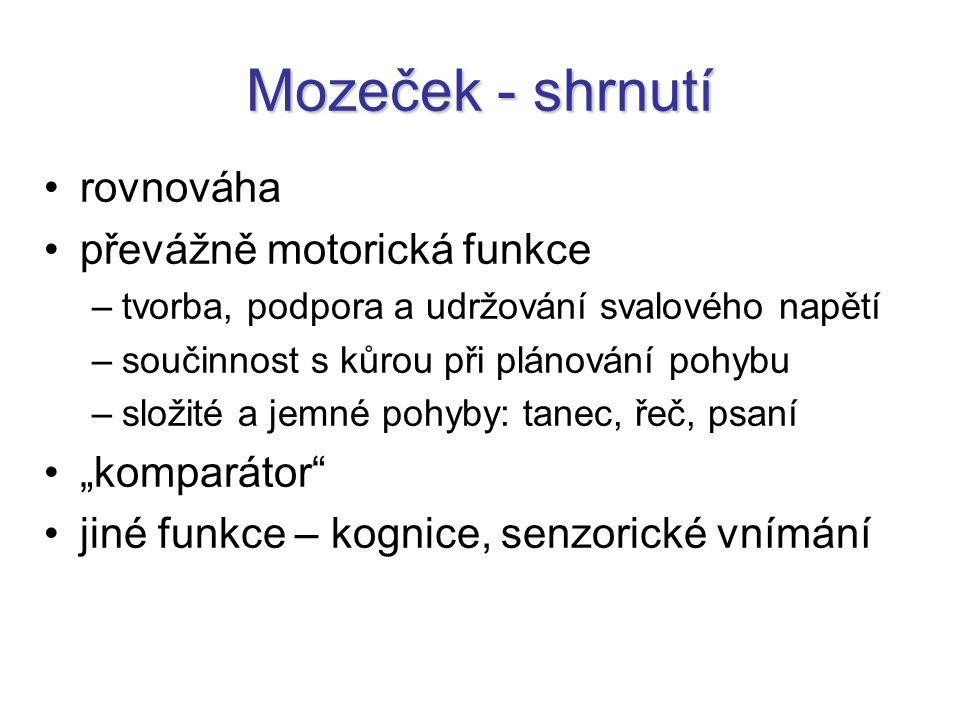"""Mozeček - shrnutí rovnováha převážně motorická funkce """"komparátor"""