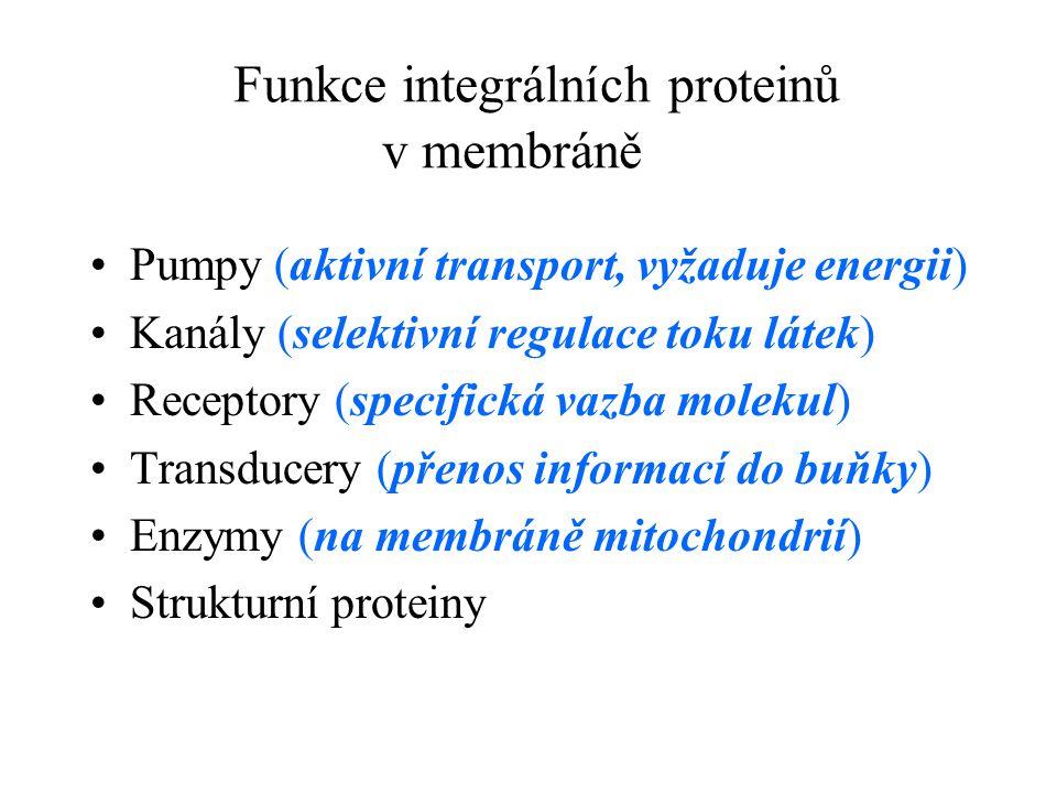 Funkce integrálních proteinů v membráně