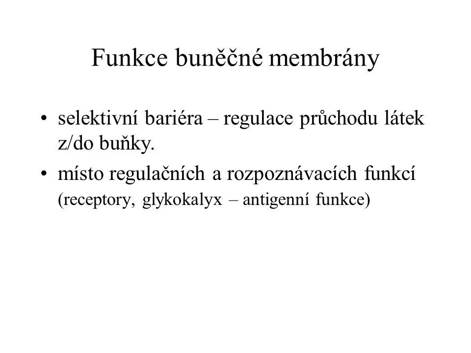 Funkce buněčné membrány