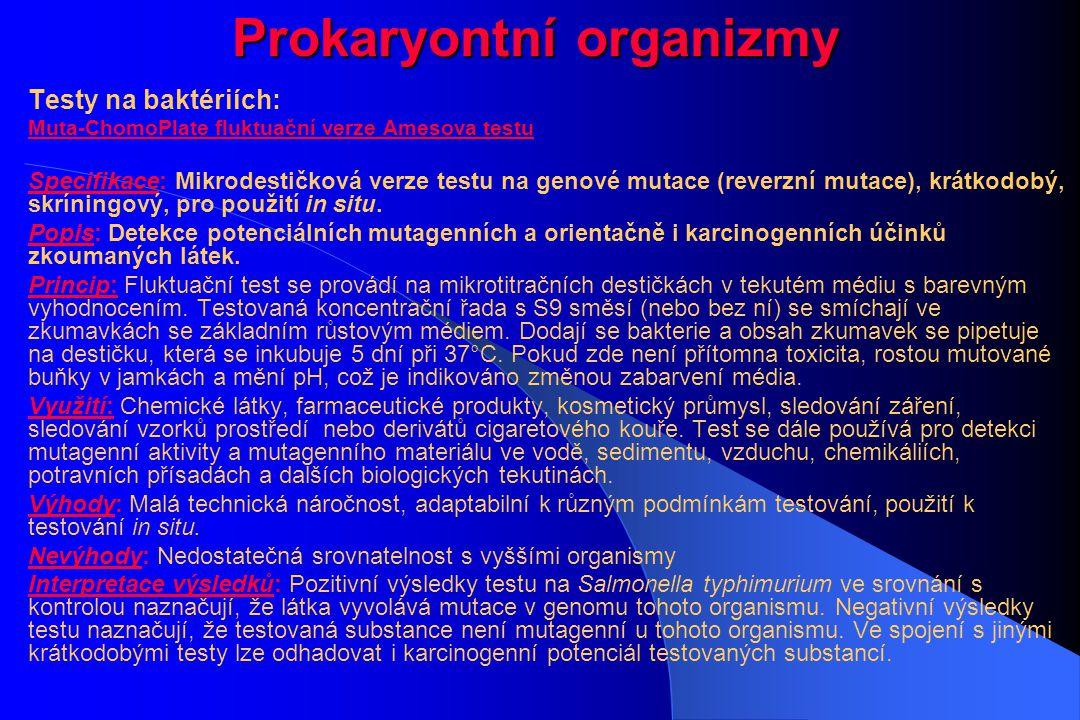 Prokaryontní organizmy