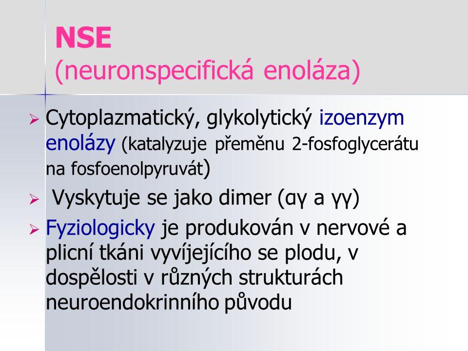 NSE (neuronspecifická enoláza)