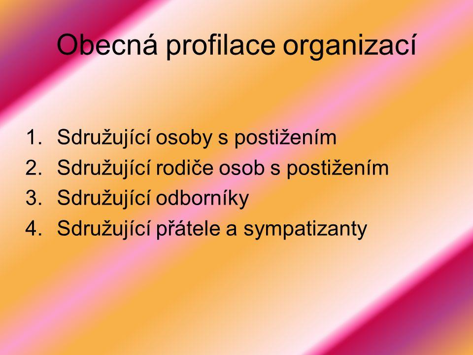 Obecná profilace organizací