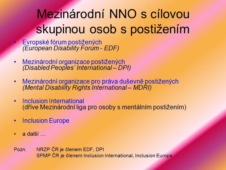 Mezinárodní NNO s cílovou skupinou osob s postižením