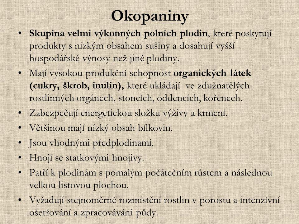 Okopaniny