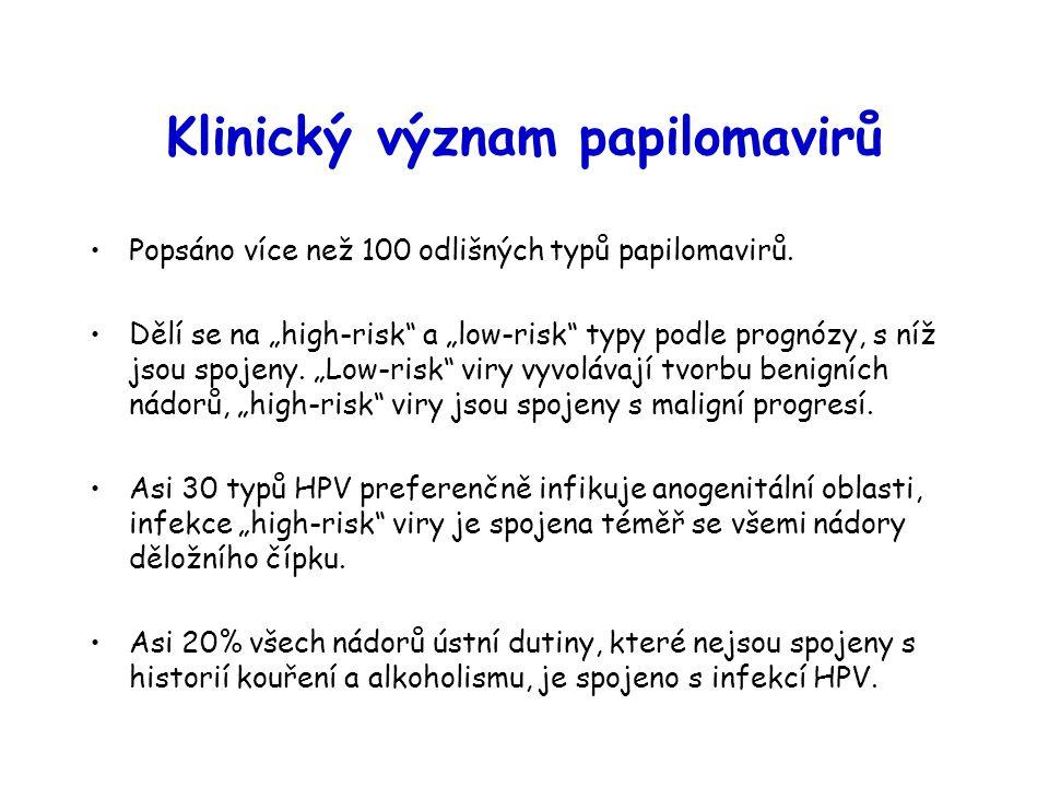 Klinický význam papilomavirů