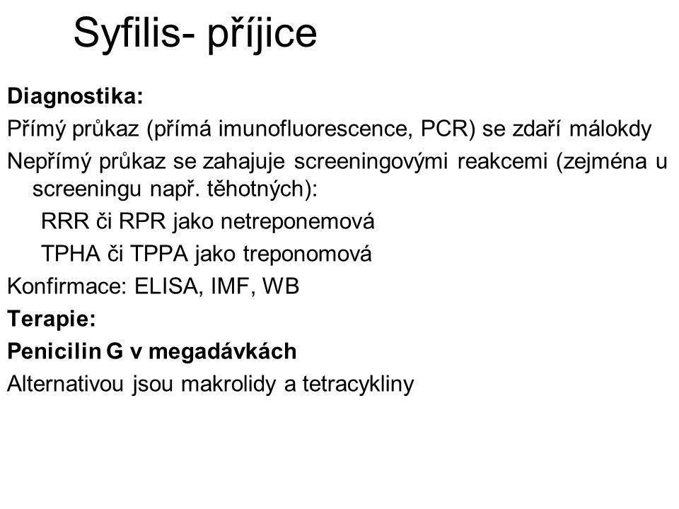 Syfilis- příjice Diagnostika: