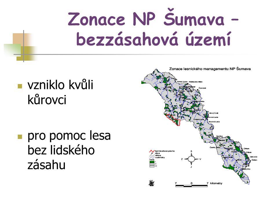 Zonace NP Šumava – bezzásahová území