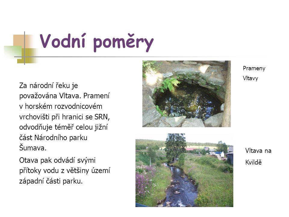 Vodní poměry Prameny. Vltavy.