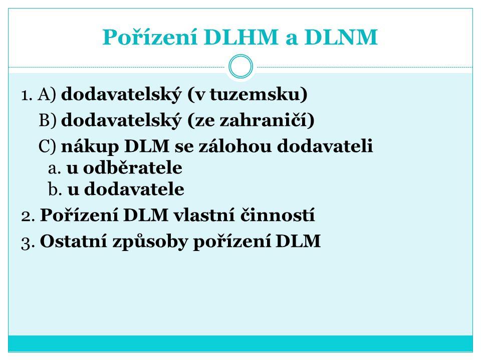 Pořízení DLHM a DLNM