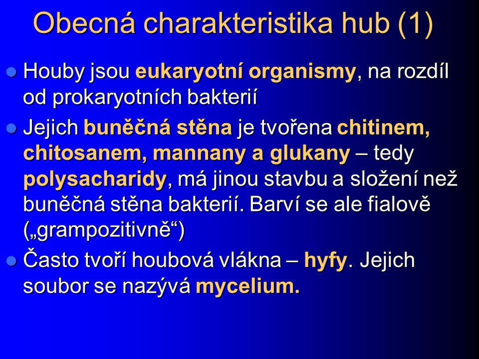 Obecná charakteristika hub (1)