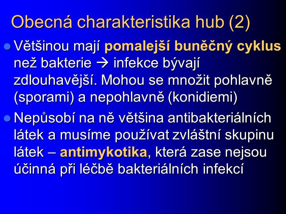 Obecná charakteristika hub (2)