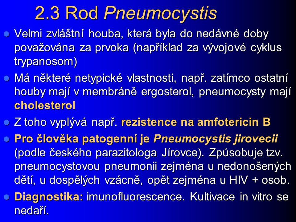 2.3 Rod Pneumocystis Velmi zvláštní houba, která byla do nedávné doby považována za prvoka (například za vývojové cyklus trypanosom)
