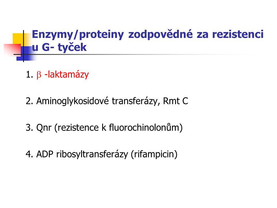 Enzymy/proteiny zodpovědné za rezistenci u G- tyček