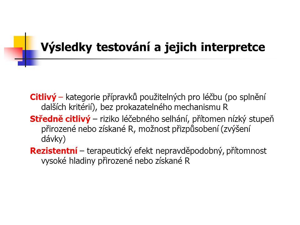 Výsledky testování a jejich interpretce