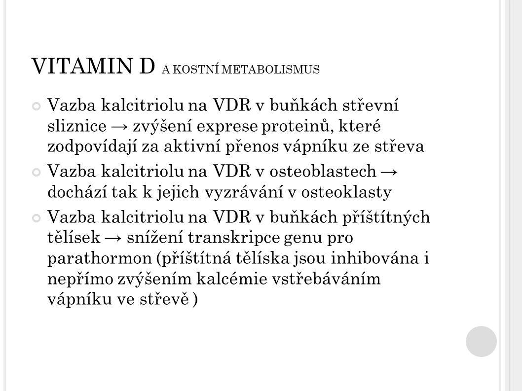 VITAMIN D A KOSTNÍ METABOLISMUS