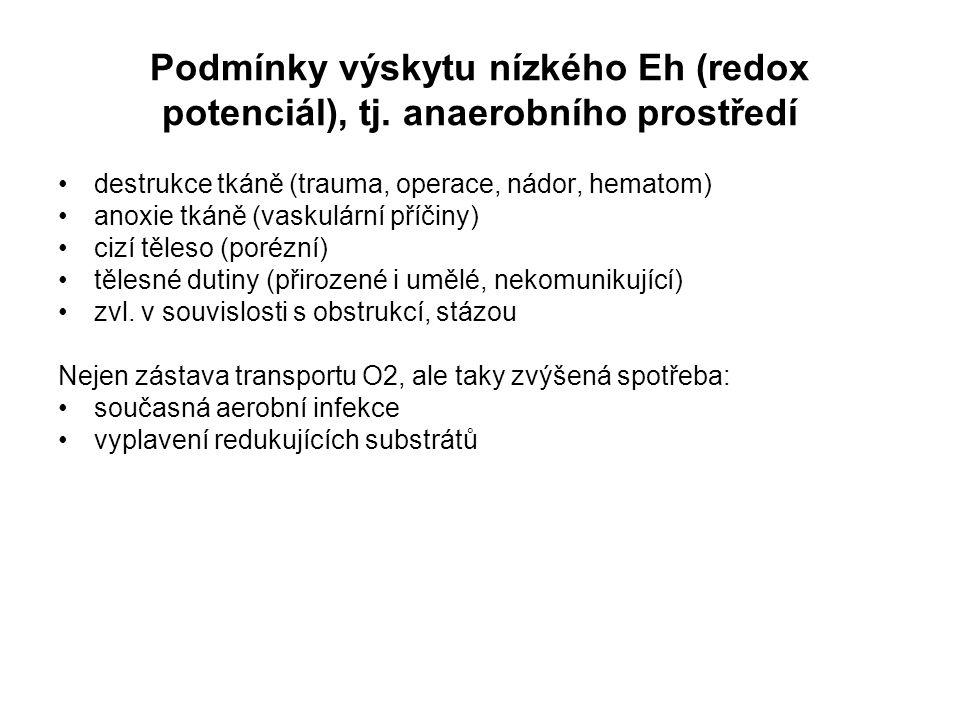 Podmínky výskytu nízkého Eh (redox potenciál), tj
