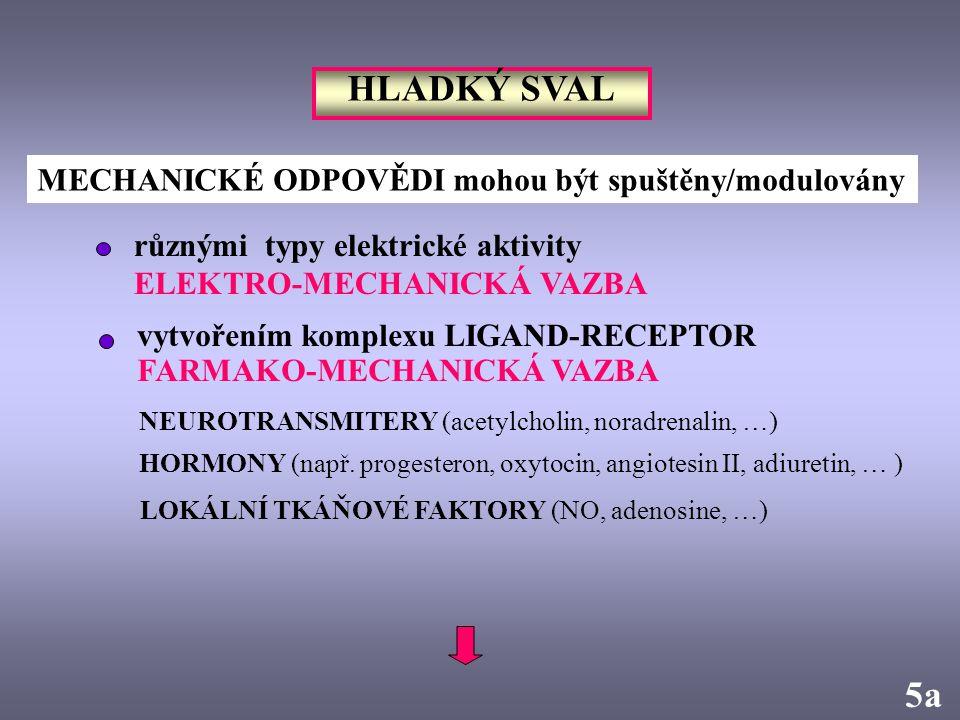 HLADKÝ SVAL 5a MECHANICKÉ ODPOVĚDI mohou být spuštěny/modulovány