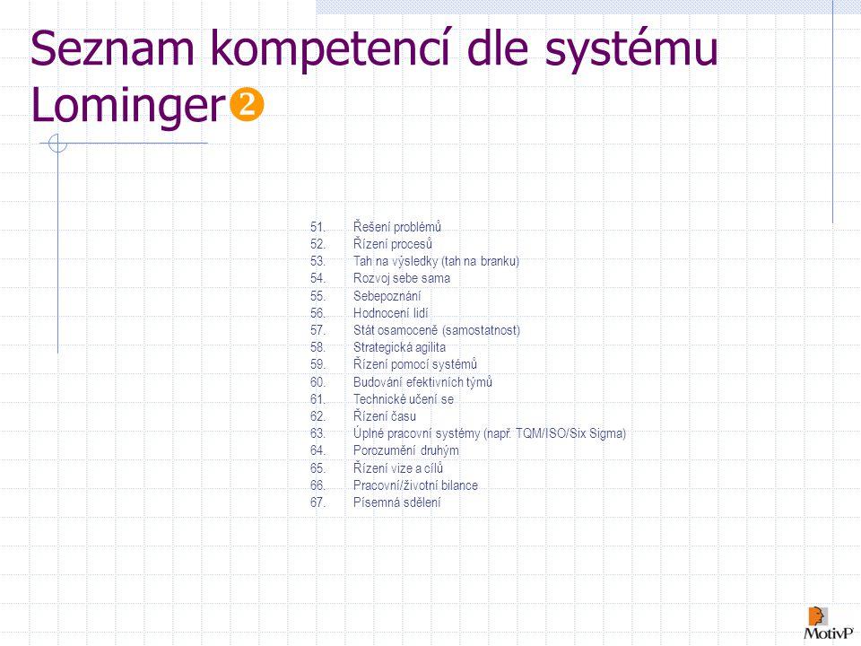 Seznam kompetencí dle systému Lominger