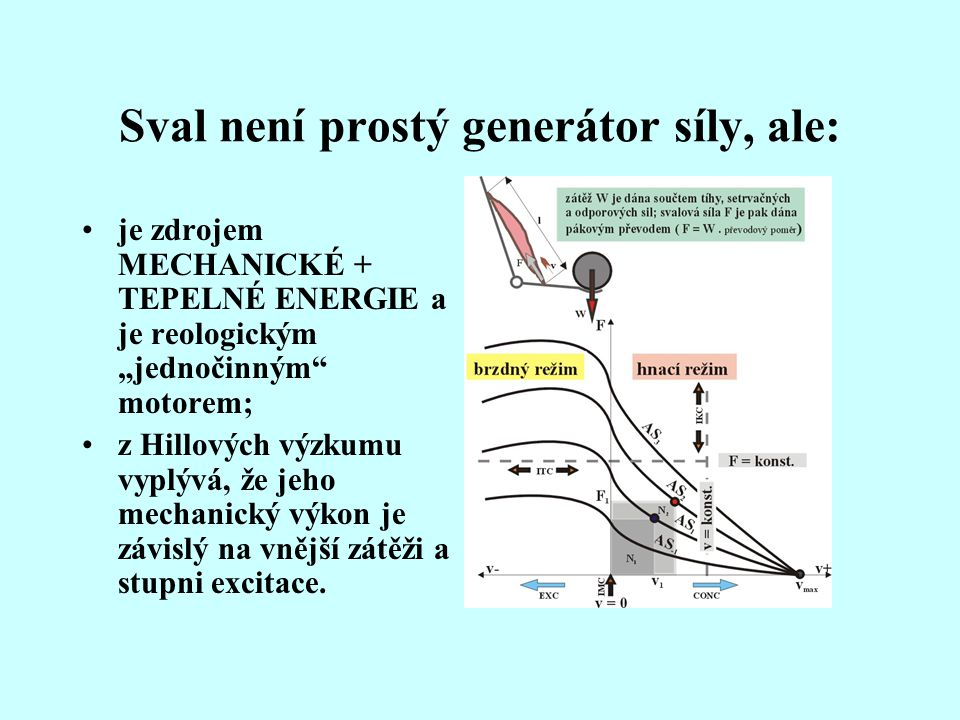 Sval není prostý generátor síly, ale: