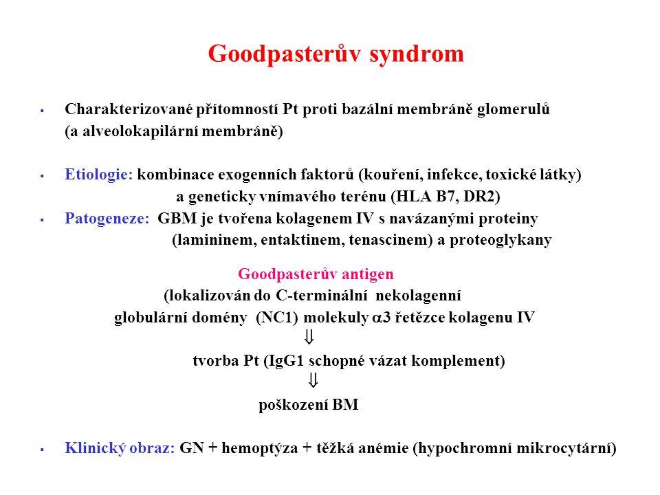 Goodpasterův syndrom Charakterizované přítomností Pt proti bazální membráně glomerulů. (a alveolokapilární membráně)
