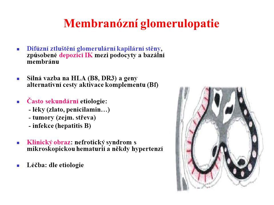 Membranózní glomerulopatie