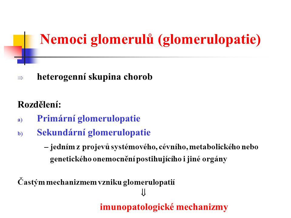Nemoci glomerulů (glomerulopatie)