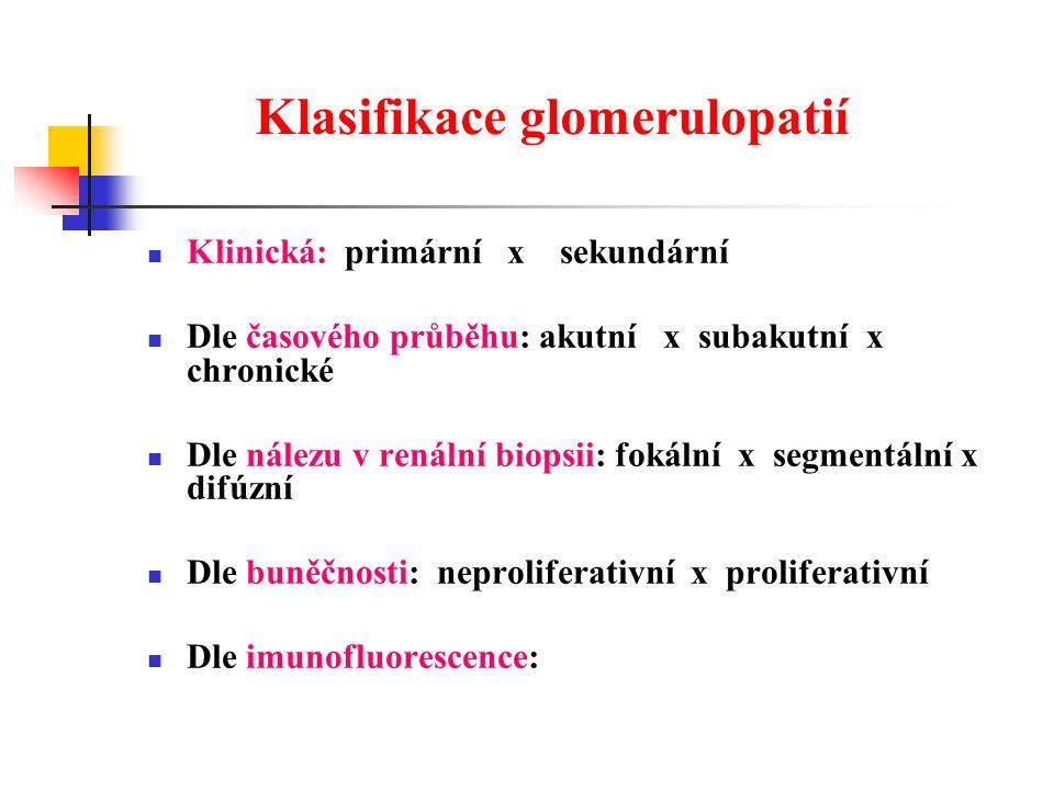 Klasifikace glomerulopatií