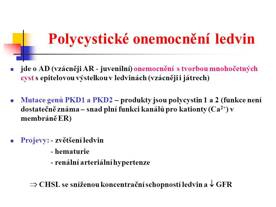 Polycystické onemocnění ledvin