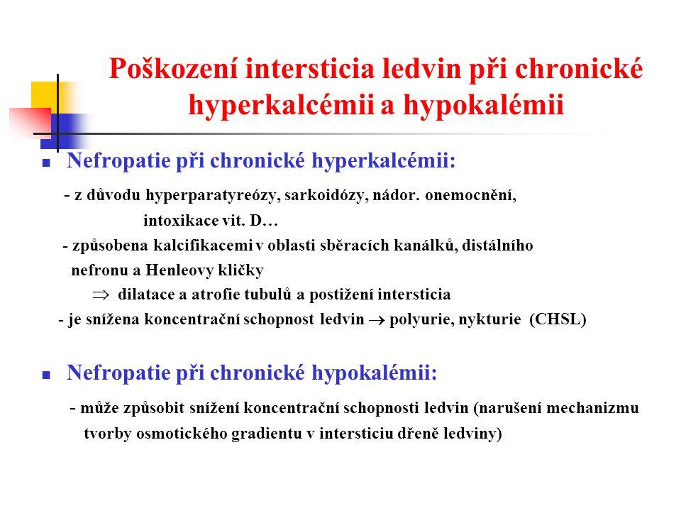 Poškození intersticia ledvin při chronické hyperkalcémii a hypokalémii