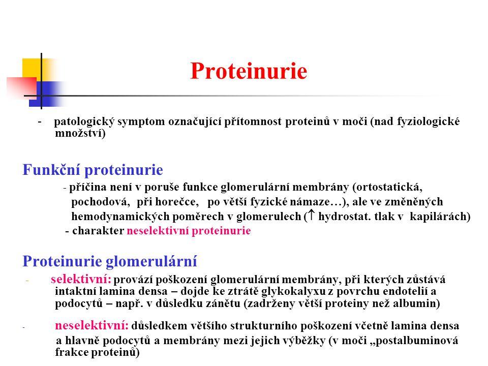 Proteinurie Funkční proteinurie Proteinurie glomerulární