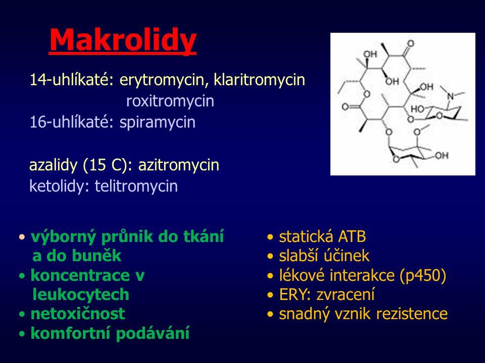 Makrolidy 14-uhlíkaté: erytromycin, klaritromycin roxitromycin
