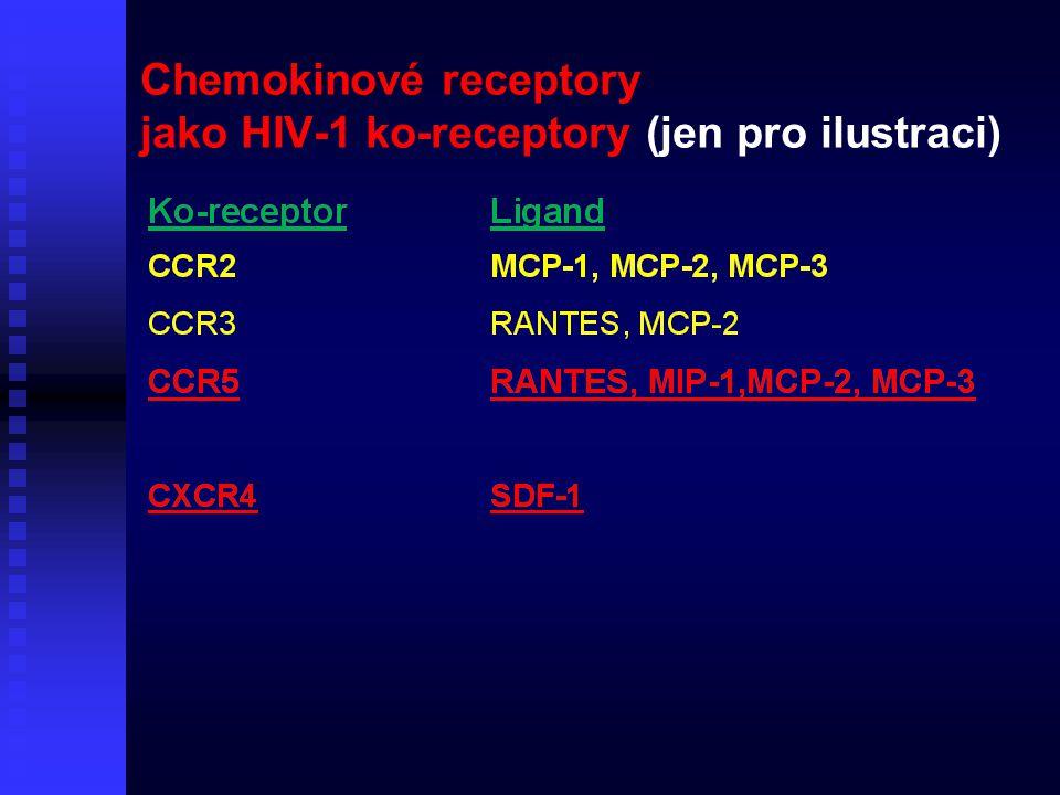 Chemokinové receptory jako HIV-1 ko-receptory (jen pro ilustraci)