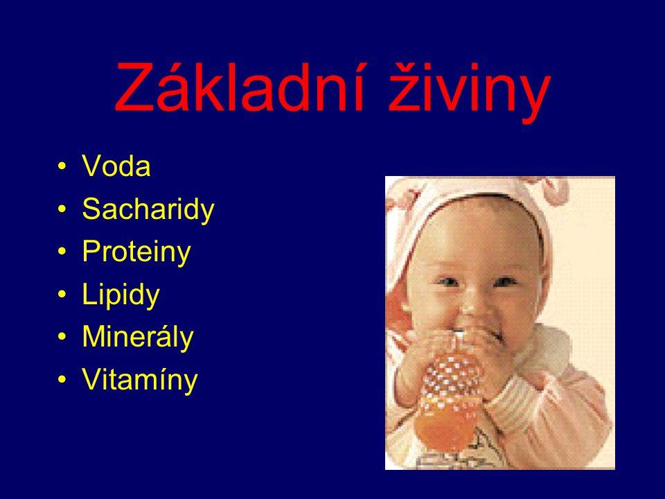 Základní živiny Voda Sacharidy Proteiny Lipidy Minerály Vitamíny