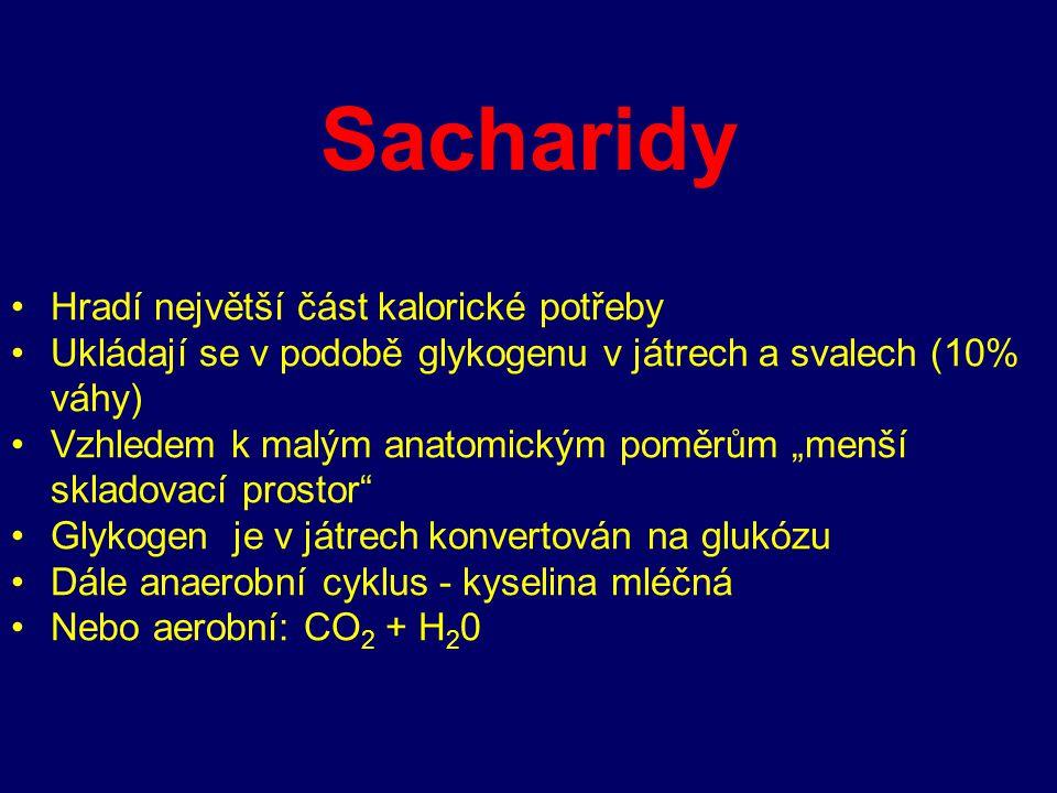 Sacharidy Hradí největší část kalorické potřeby