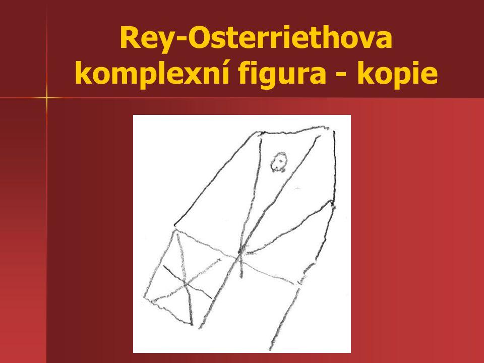 Rey-Osterriethova komplexní figura - kopie