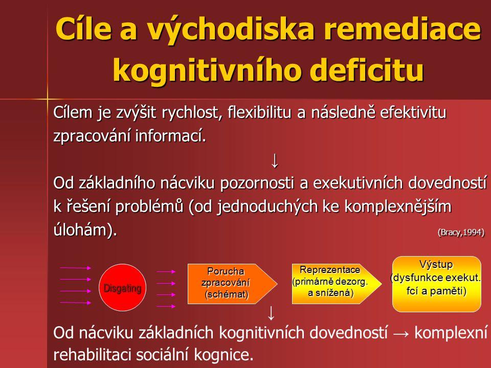 Cíle a východiska remediace kognitivního deficitu