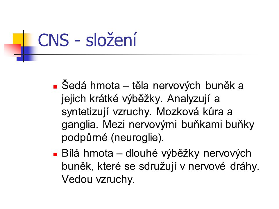 CNS - složení