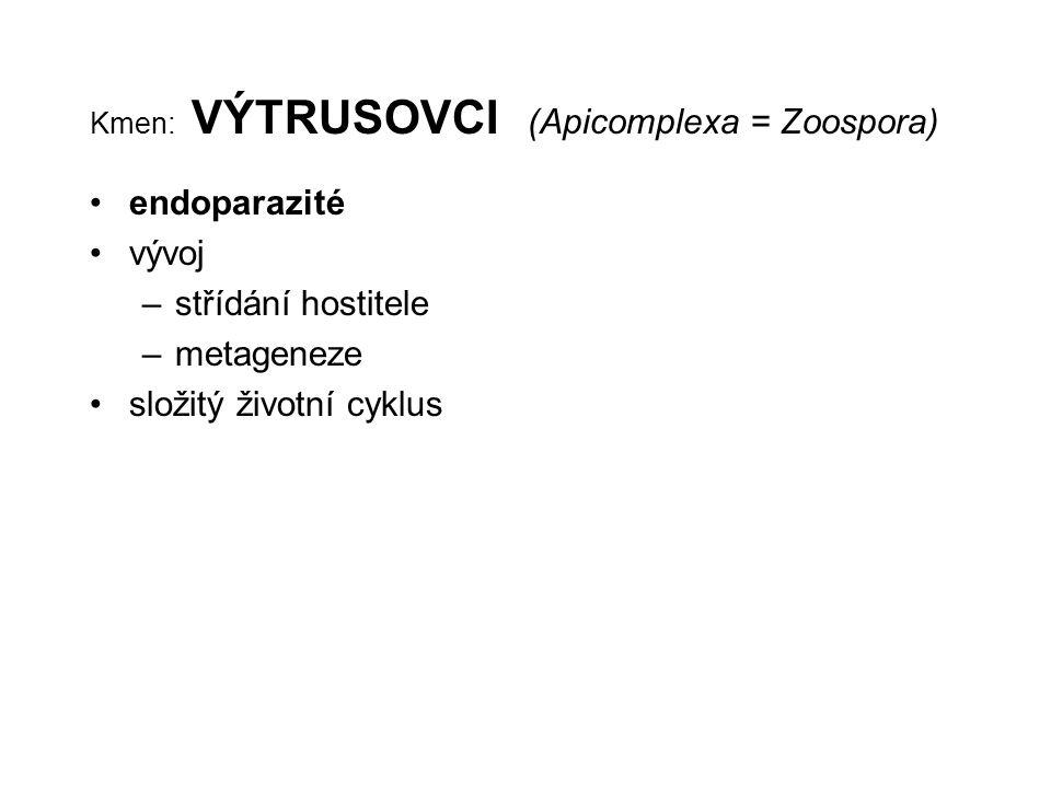 Kmen: VÝTRUSOVCI (Apicomplexa = Zoospora)