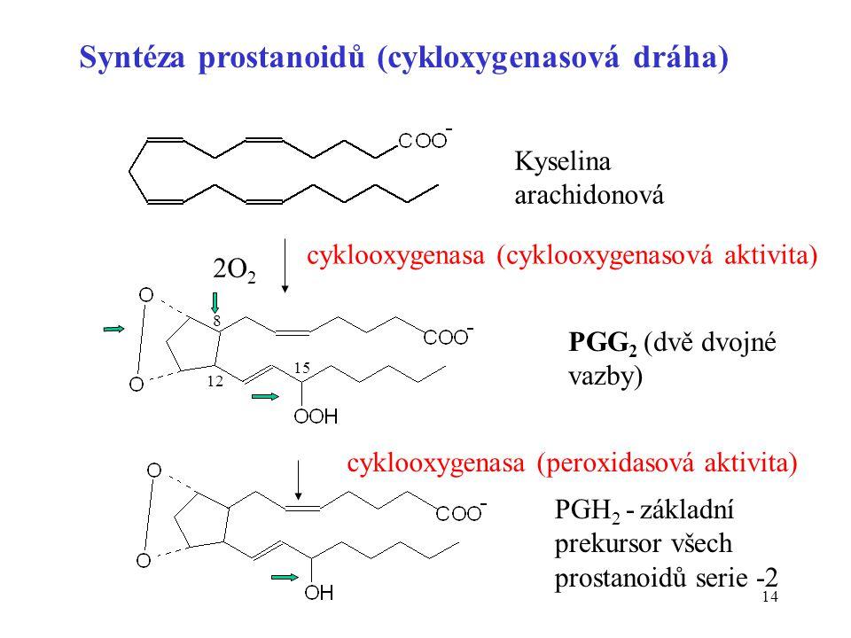 Syntéza prostanoidů (cykloxygenasová dráha)