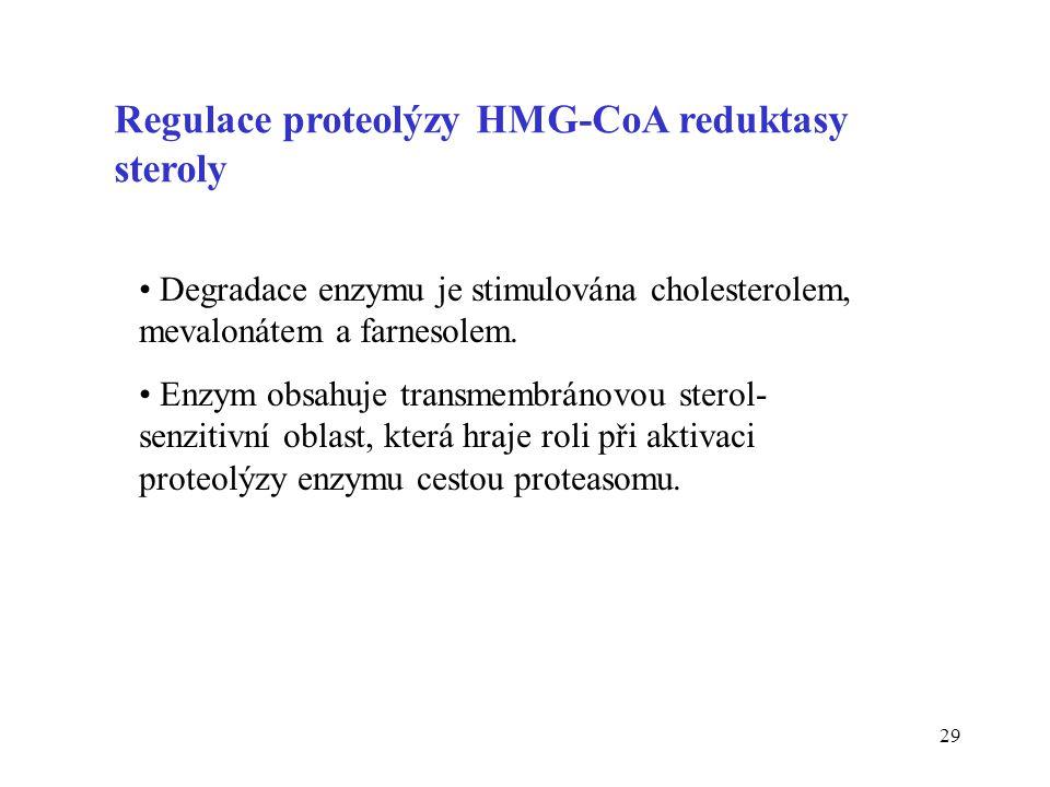 Regulace proteolýzy HMG-CoA reduktasy steroly