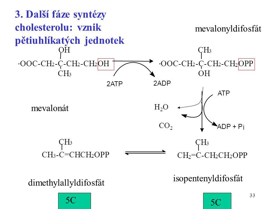 3. Další fáze syntézy cholesterolu: vznik pětiuhlíkatých jednotek
