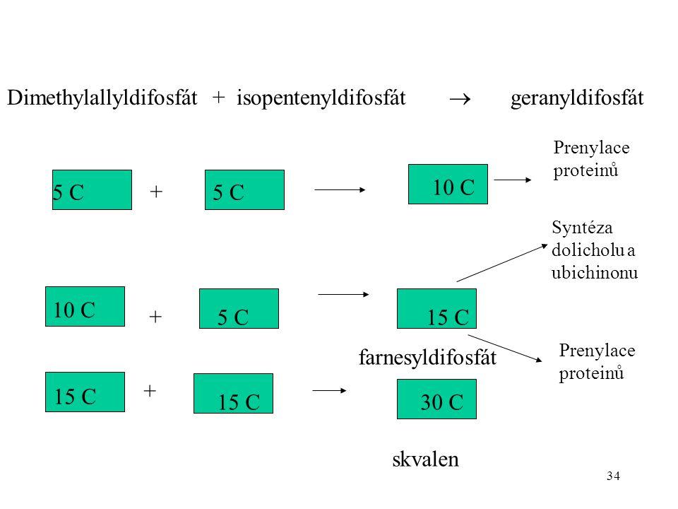 Dimethylallyldifosfát + isopentenyldifosfát  geranyldifosfát