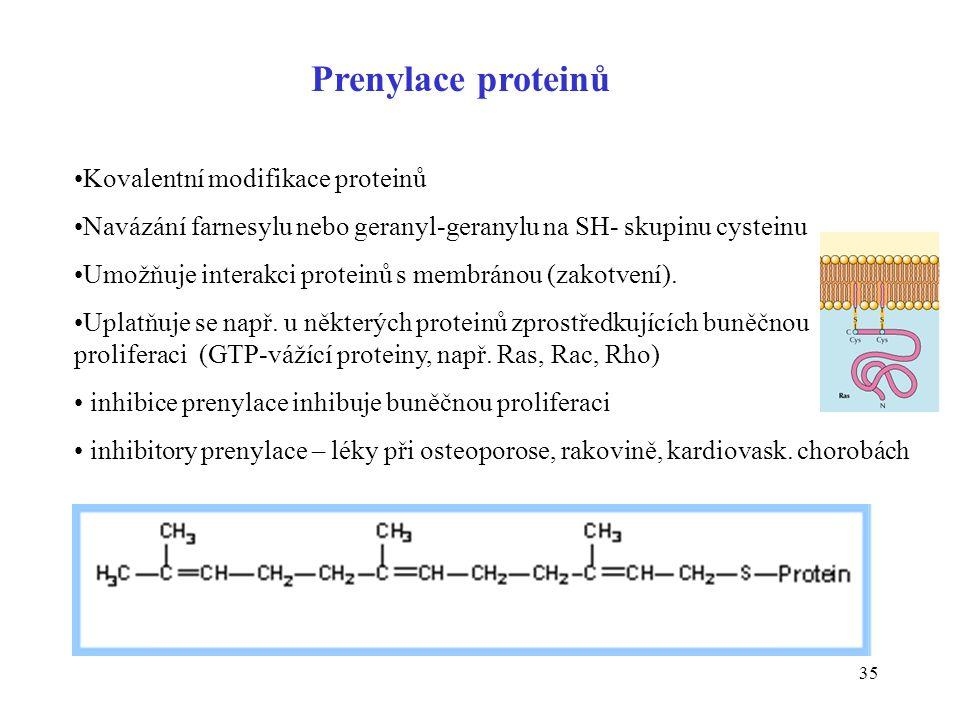 Prenylace proteinů Kovalentní modifikace proteinů