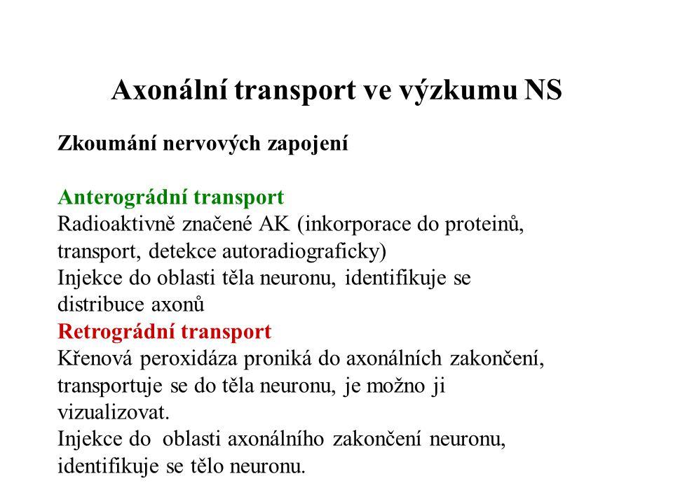Axonální transport ve výzkumu NS