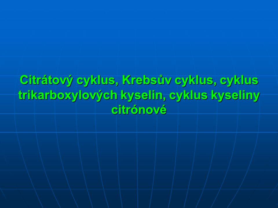 Citrátový cyklus, Krebsův cyklus, cyklus trikarboxylových kyselin, cyklus kyseliny citrónové