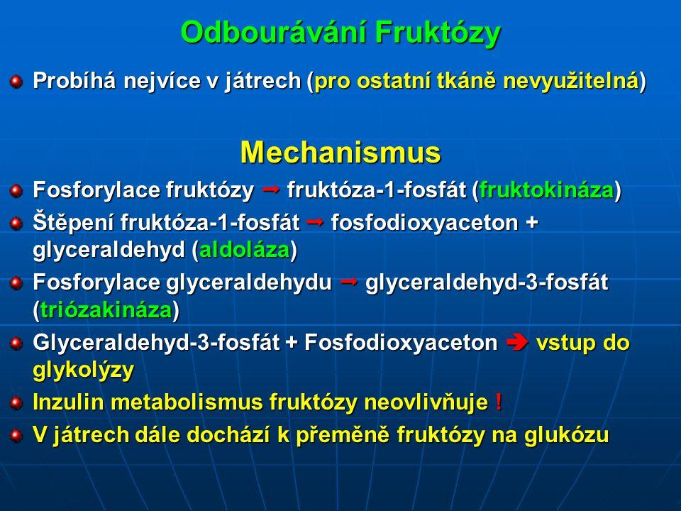 Odbourávání Fruktózy Mechanismus