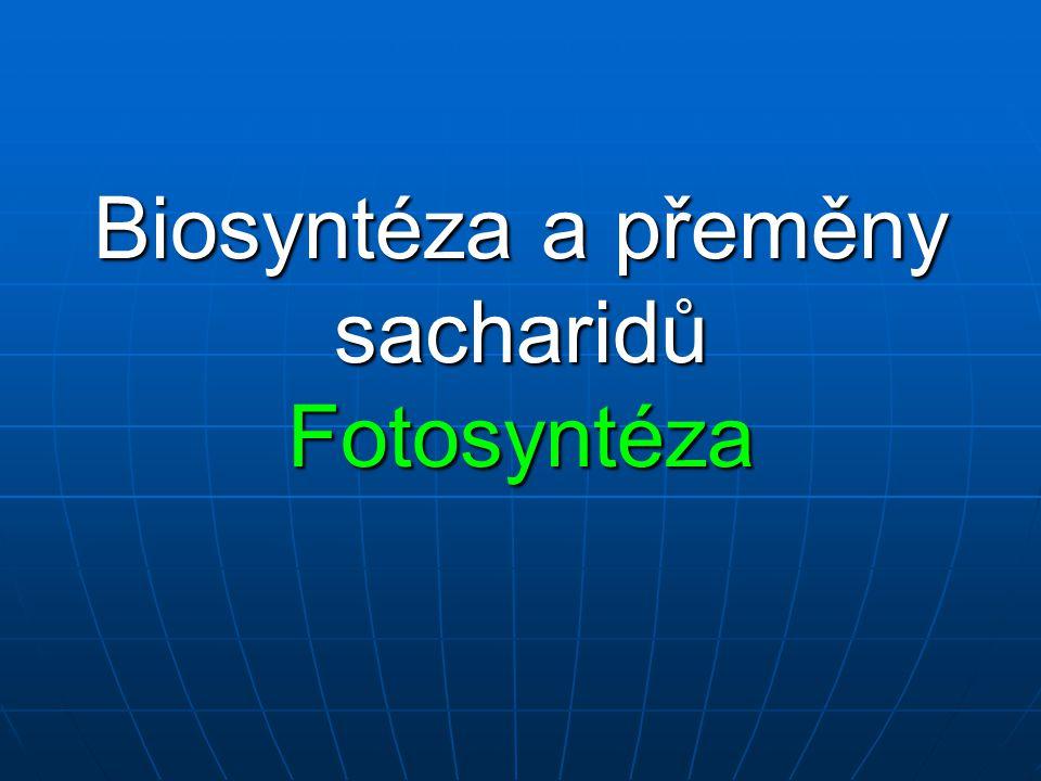 Biosyntéza a přeměny sacharidů Fotosyntéza