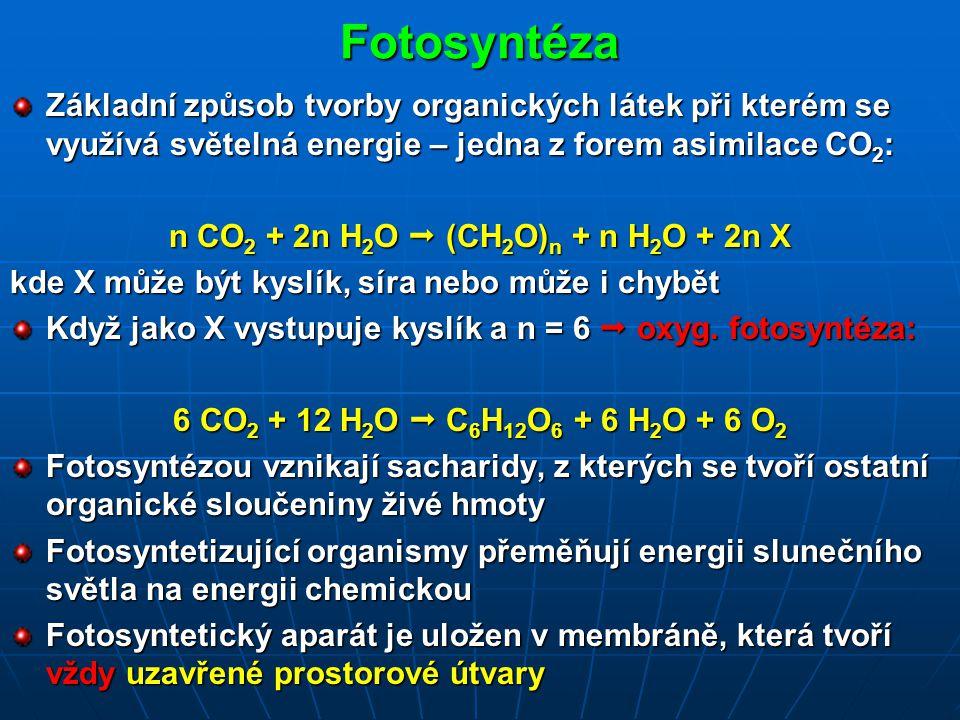 n CO2 + 2n H2O  (CH2O)n + n H2O + 2n X